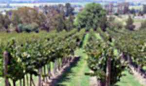 Bathurst's Cool Climate Wine Show