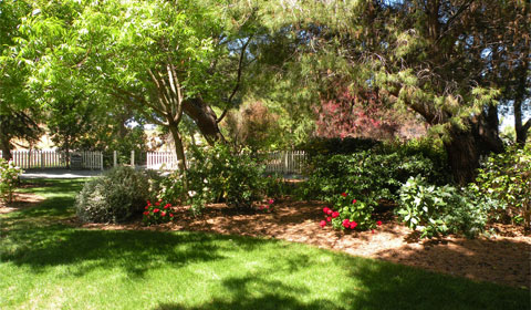The gardens at Rengstorff House