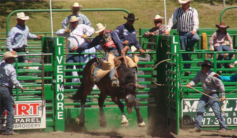 The saddle bronc event