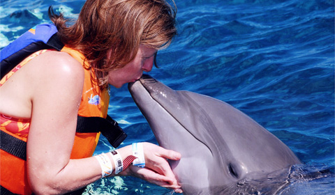 Review: Swimming with Dolphins at Dolphin Discovery, Cozumel