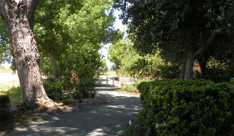 The path to the picket fence