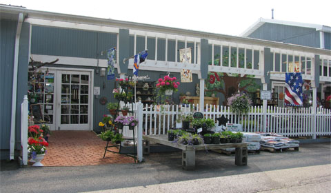 Welcoming front entrance for The Blueberry Patch