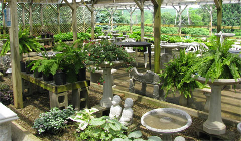 Ferns and garden statues galore