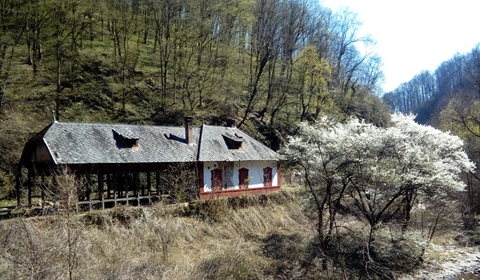 Abandoned building by the cave and waterfall -  some trains still stop at this station