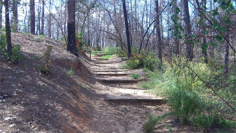 Stepped path