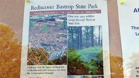 Rediscover Bastrop State Park newsletter