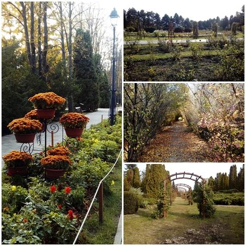 Botanical garden scenery