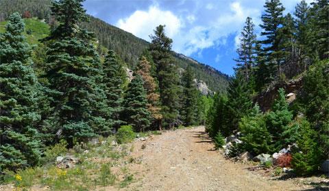 Beautiful backroad of Hayden Pass
