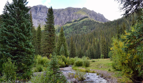 South Mineral Creek