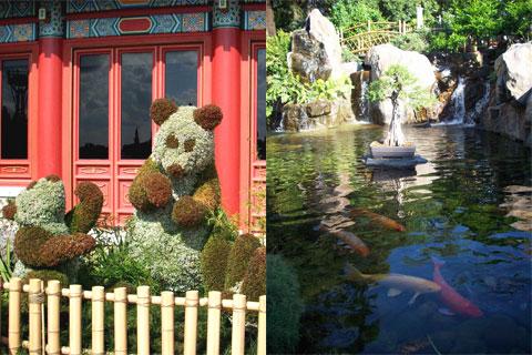 Panda and koi, Disney World