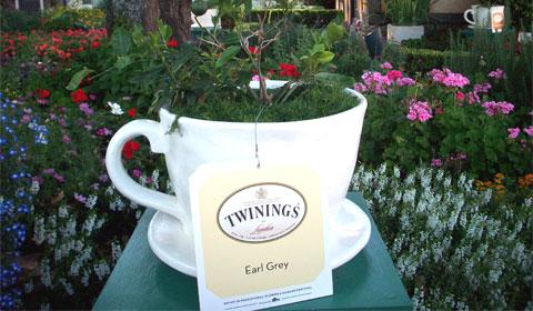 Tea in the United Kingdom. Disney World