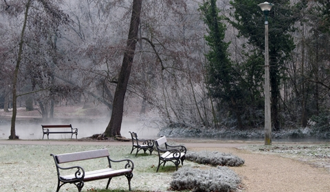 Eerie benches in a frozen scene