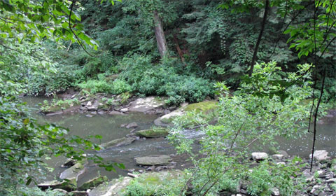 A section of Mill Creek downstream from Lanterman's Mill, Youngstown, Ohio