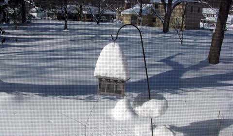 Snow on the bird feeder