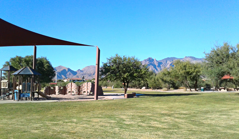 The green center of Rio Vista Natural Resource Park, Tucson, Arizona