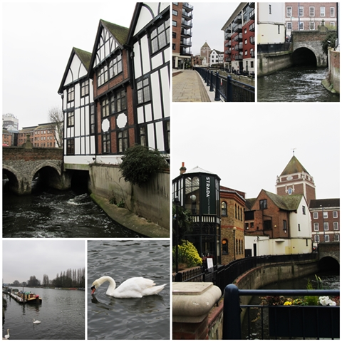 Hogsmill River from various angles