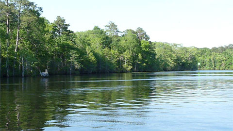 Intracoastal Waterway - Waccamaw River