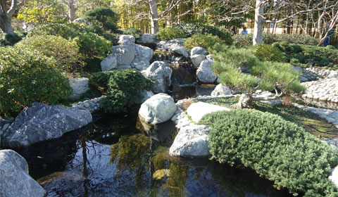 Japanese Friendship Garden - waterfall