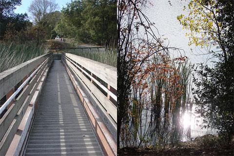 Lafeyette Reservoir