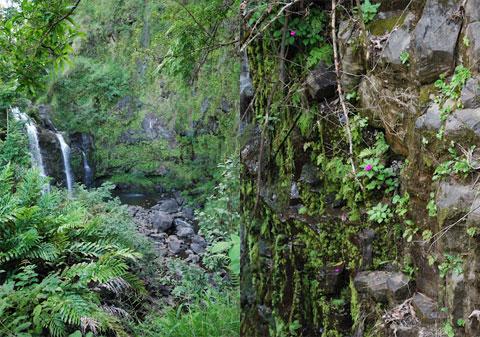 Three Bears Falls (a.k.a. Upper Waikani Falls) Maui