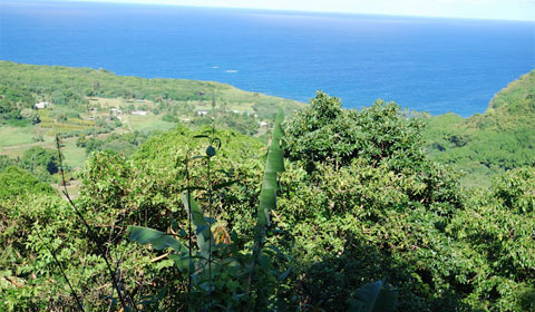 Maui road trip, Road to Hana