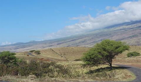 Open space, Maui