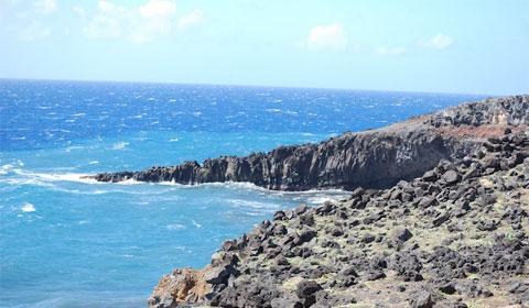 Maui, lava rock shore