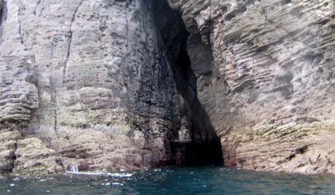Mercury Bay cliff formations