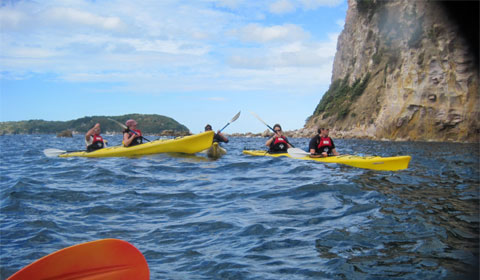 Kayaking in Mercury Bay