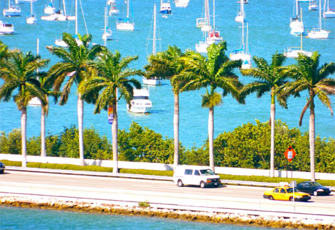 Miami boat scene