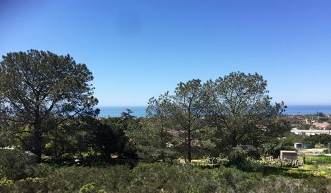 Ocean View from The Overlook