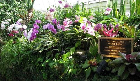The Frank Sarris Orchid Room
