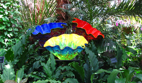 Glass sculptures, Phipps Conservatory