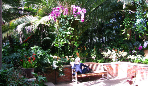 Palm Court, Phipps Conservatory