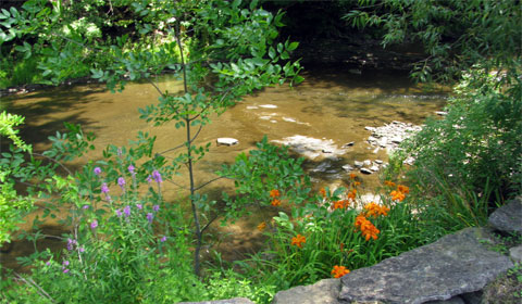 Yellow Creek, Poland, Ohio, right behind Poland Library