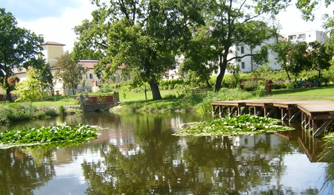 The small pond of the Rákóczi mansion's lovely park.