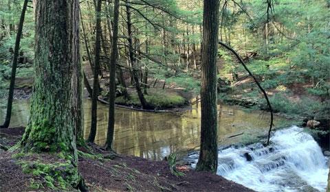 Falls Brook waterfalls
