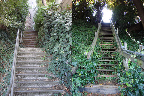 Mystery stairways in Sausalito