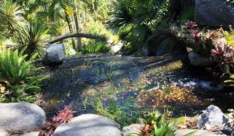 Upper Falls Area Make a wish - I did