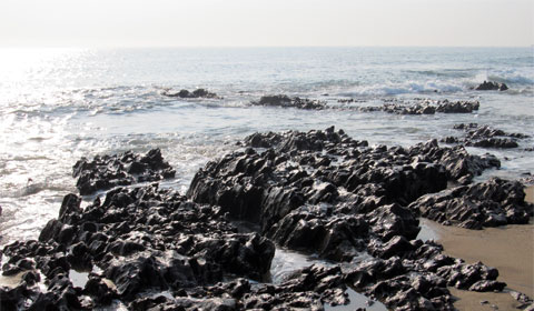 The Bay of Bengal shoreline