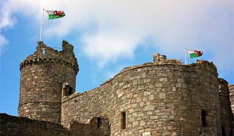 Welsh flags flown with pride at Harlech Castle