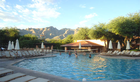 The swim-up bar at Westin La Paloma