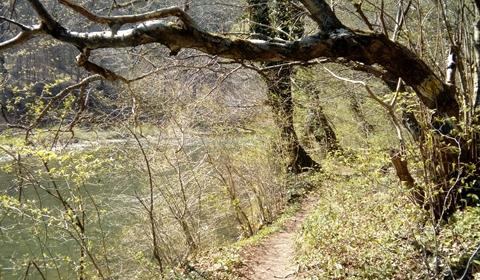 Winding paths to walk
