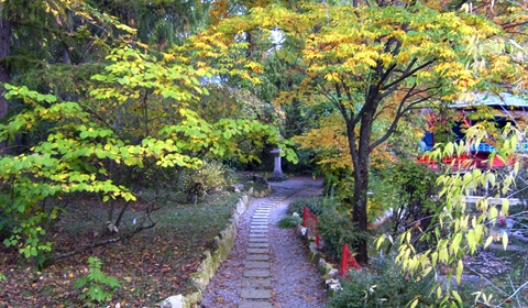 The Botanical Garden's pathway leading to the heart of the Japanese Garden.