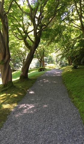 Peaceful walks